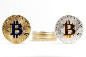 BitPay vs BTCPay: Which Bitcoin Fee Processor is Proper for Your Enterprise?